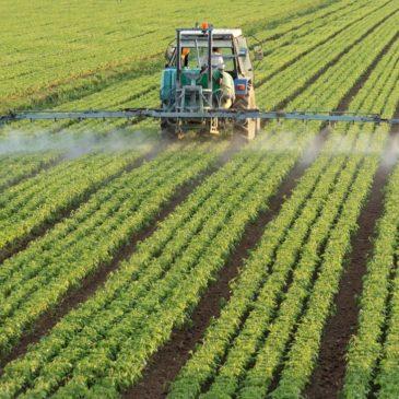 Главный покупатель китайских технических пестицидов – Россия
