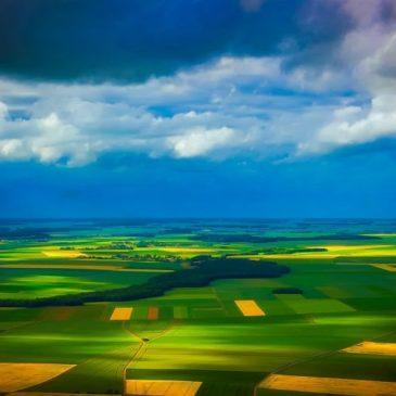 Франция запрещает эпоксиконазол