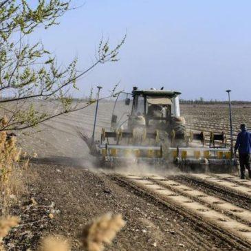 Китай внедряет беспилотное сельское хозяйство на основных зерновых базах страны