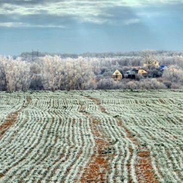 Теплая зима в России и ее последствия