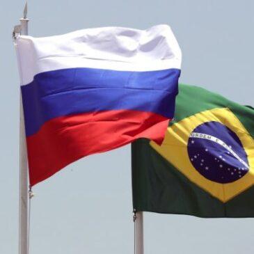 Россия экспортировала в Бразилию пшеницы на 30 млн долларов за 9 месяцев 2020 года