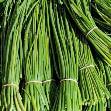 Китай снабжает Забайкалье свежим луком и имбирем