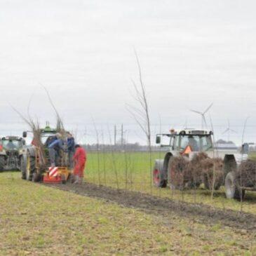 В Нидерландах открывают крупнейший многопрофильный центр по агролесоводству