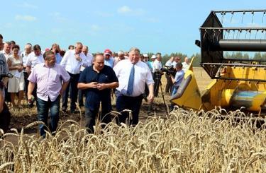 100 центнеров с гектара: в Мордовии поставлен рекорд по урожайности зерновых