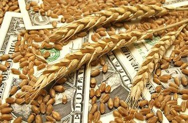 Эксперты повышают прогнозы урожая зерна в РФ в 2017 г., цены активно падают