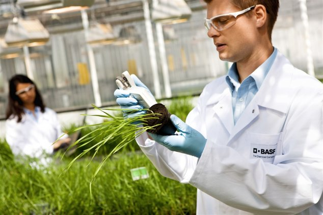 BASF купит долю бизнеса Bayer по производству гербицидов и семян