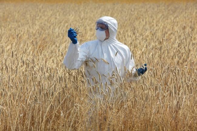 В Швейцарии идет борьба с «пестицидными фермерами»
