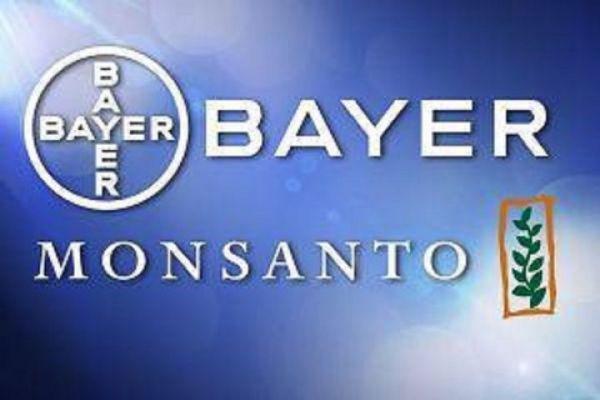 Bayer продает свой бизнес цифровых приложений для фермеров