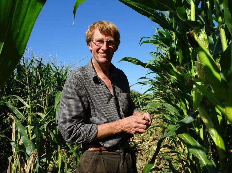 Немецким фермерам нужна помощь в размере 1 млрд евро