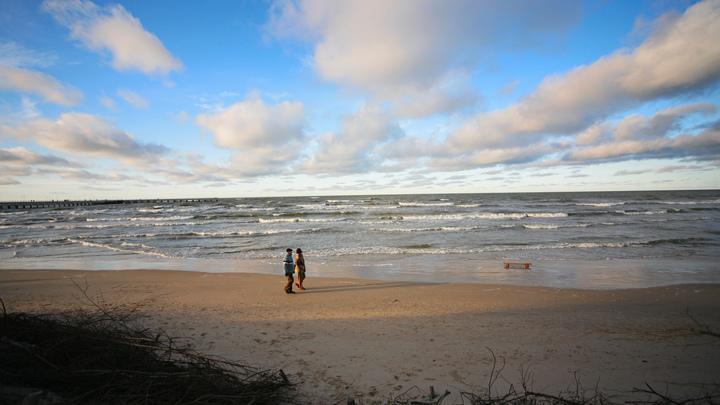 Биопестициды спасут Балтийское море