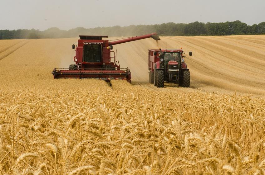 Кредитование сезонных полевых работ выросло на 38%