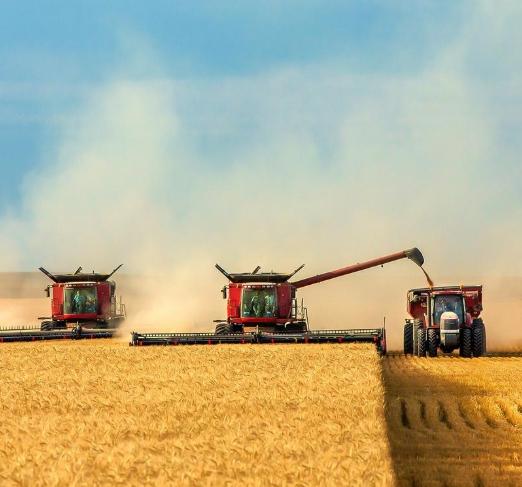 Прогноз по мировому производству зерна пересмотрели в сторону повышения