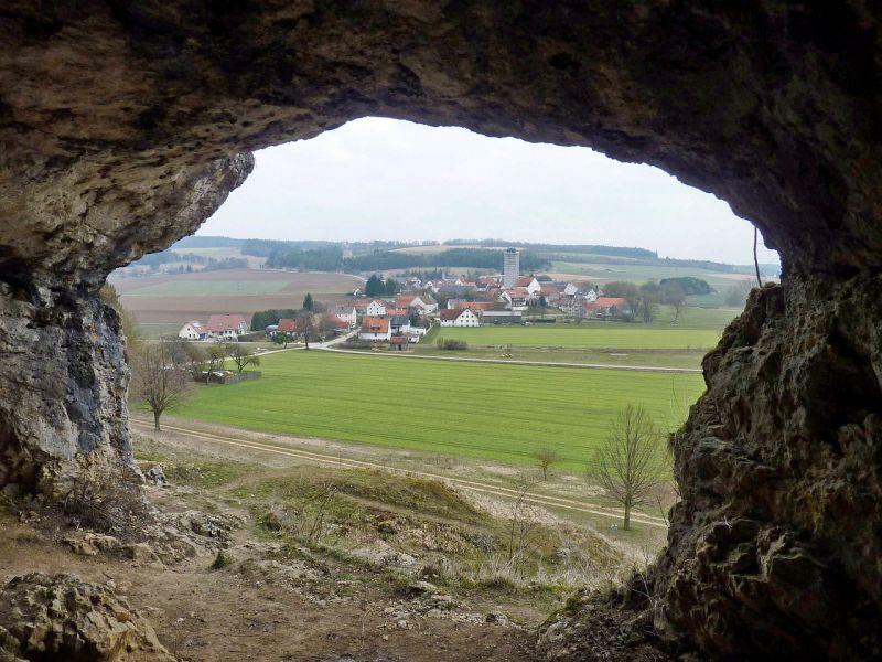 На 50% Бавария планирует сократить обработки СЗР к 2028 году